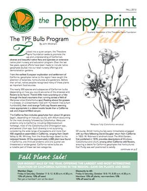 Poppy Print Fall 2013 cover