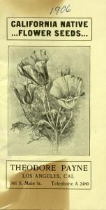 a1906 wf