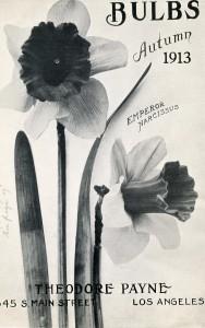 a1913 b