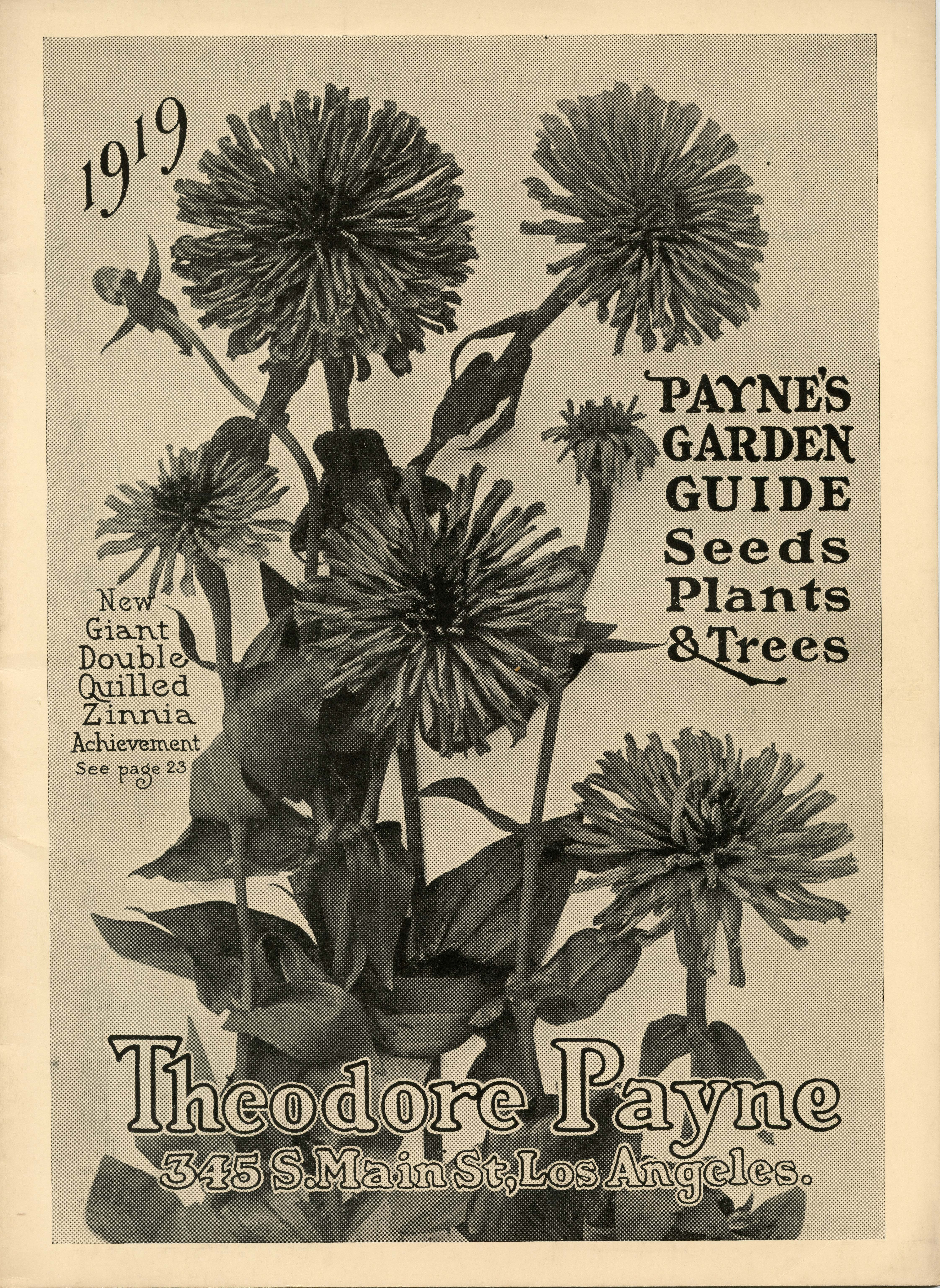From The Archives Catalogs Theodore Payne Foundation