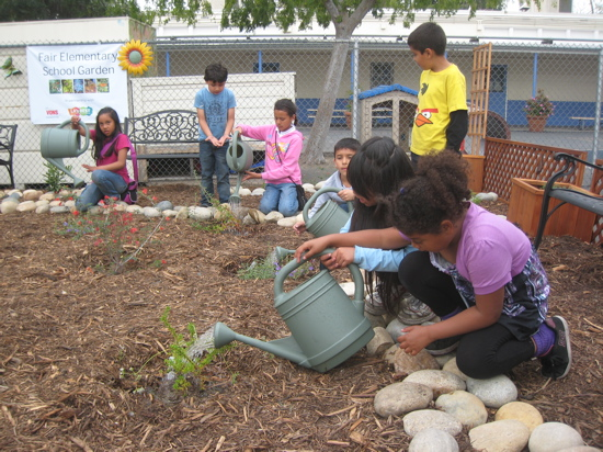 Students at Fair Elementary,.North Hollywood (an LA's BEST school) watering plants in their new native plant garden.