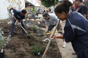 Community volunteers helped install the native plant garden at the Los Feliz Post Office. Photo: Green Space Los Feliz