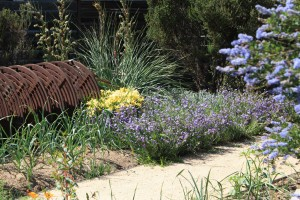 Hessing/Bonfigli Garden, Altadena