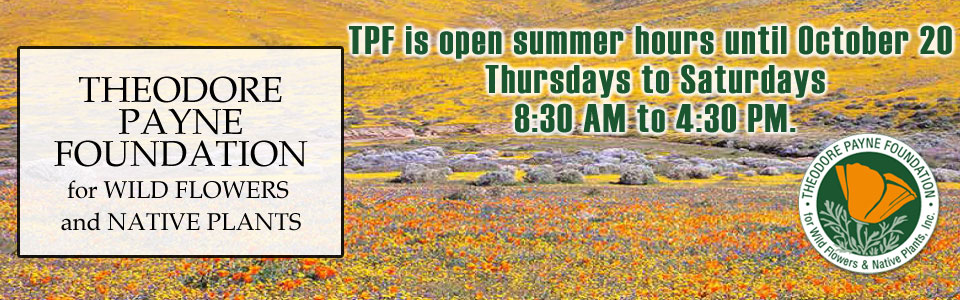 Theodore Payne Foundation - Summer Hours